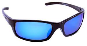 Blue Polarized Sunglasses
